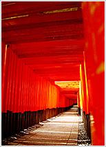 Kyoto Confidence