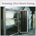 Steaming After Brush Dyeing